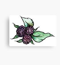 Black Raspberry Canvas Print