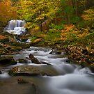 Lower Decew Falls by (Tallow) Dave  Van de Laar