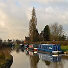 From the towpath by almaalice