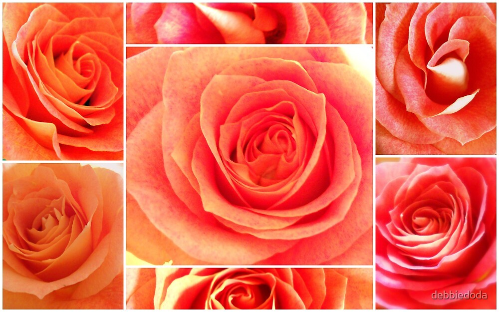 Collage of Valentine Roses by debbiedoda