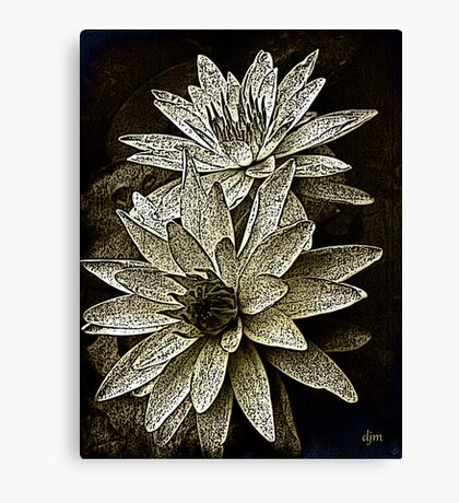 Natures Perfection_2 Canvas Print