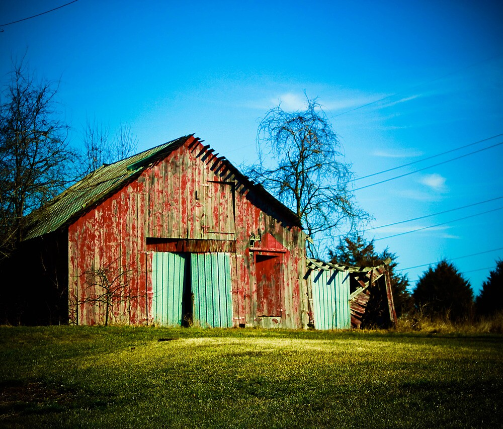 WHO SAID BARNS NEED TO BE PRETTY? by Pauline Evans