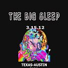 WHILE YOU SLEEP-THE BIG SLEEP  by Michelle Scott