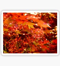Leaves of Red   ^ Sticker
