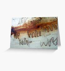 Scribbly Gum, Noosa, QLD, Australia - 2 Greeting Card