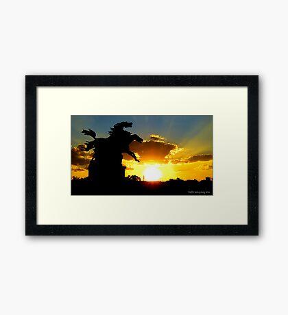 Prancing horses Framed Print