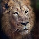 Portrait of the King! by Squealia