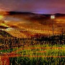 Elysian Field (of dreams) by Rick Wollschleger