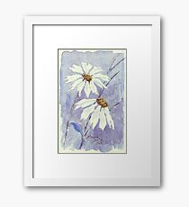 The two little Daisies Framed Print
