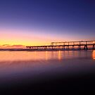 Dawns First Light by Ann  Van Breemen