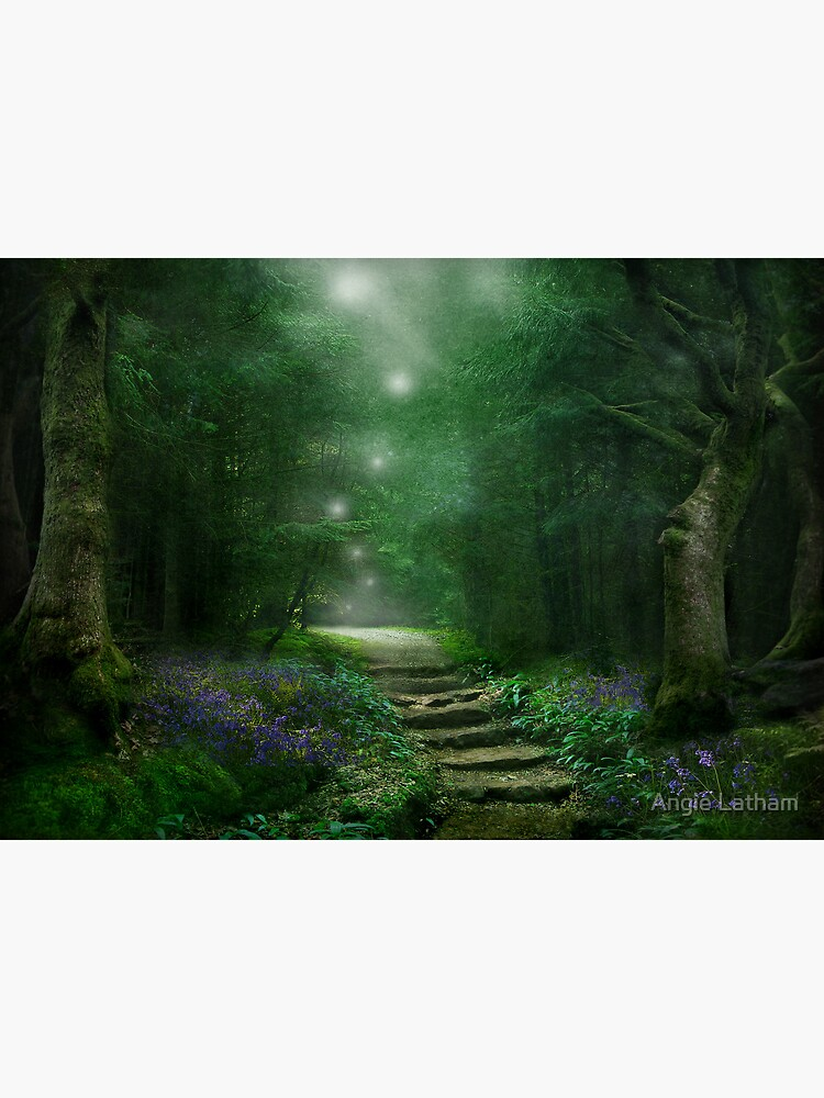 Spirit of the Woods by AngelaBarnett
