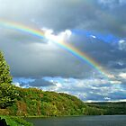 Somewhere Over The Rainbow ...The Birds Are Flying High by Geno Rugh