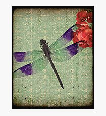 Dragonfly 6 Photographic Print