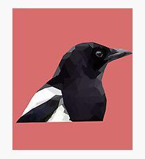 The Magpie Photographic Print