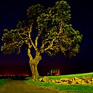 Night Tree by bazcelt