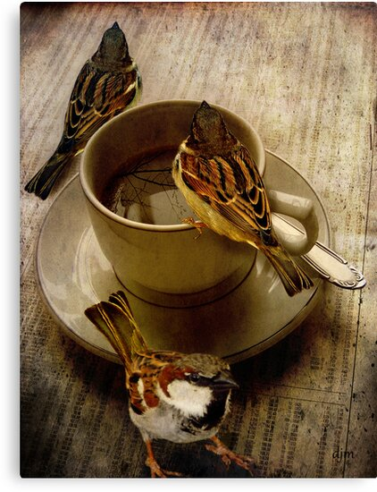 Cold Coffee by Diane Johnson-Mosley