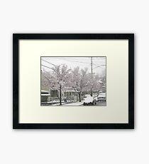 Feb. 19 2012 Snowstorm 12 Framed Print