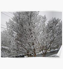 Feb. 19 2012 Snowstorm 14 Poster