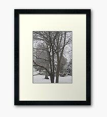 Feb. 19 2012 Snowstorm 16 Framed Print