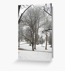 Feb. 19 2012 Snowstorm 17 Greeting Card