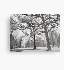Feb. 19 2012 Snowstorm 19 Metal Print