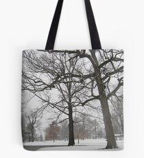 Feb. 19 2012 Snowstorm 19 Tote Bag
