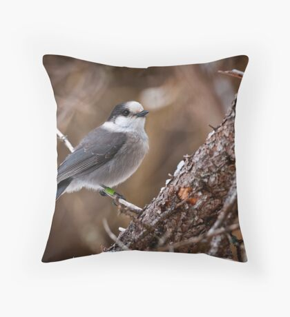 Gray Jay  Throw Pillow