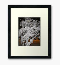 Feb. 19 2012 Snowstorm 65 Framed Print