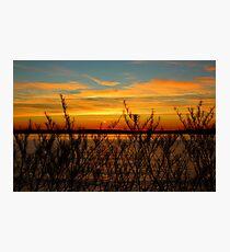 Alki Sunset Photographic Print