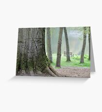 The Mighty Beech Tree  Greeting Card