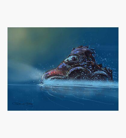Water Beetle Photographic Print