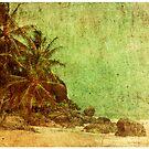 Shipwrecked by Andrew Paranavitana