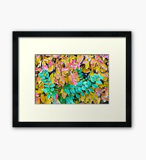 Background of vivid red and green autumn bush leaves Framed Print