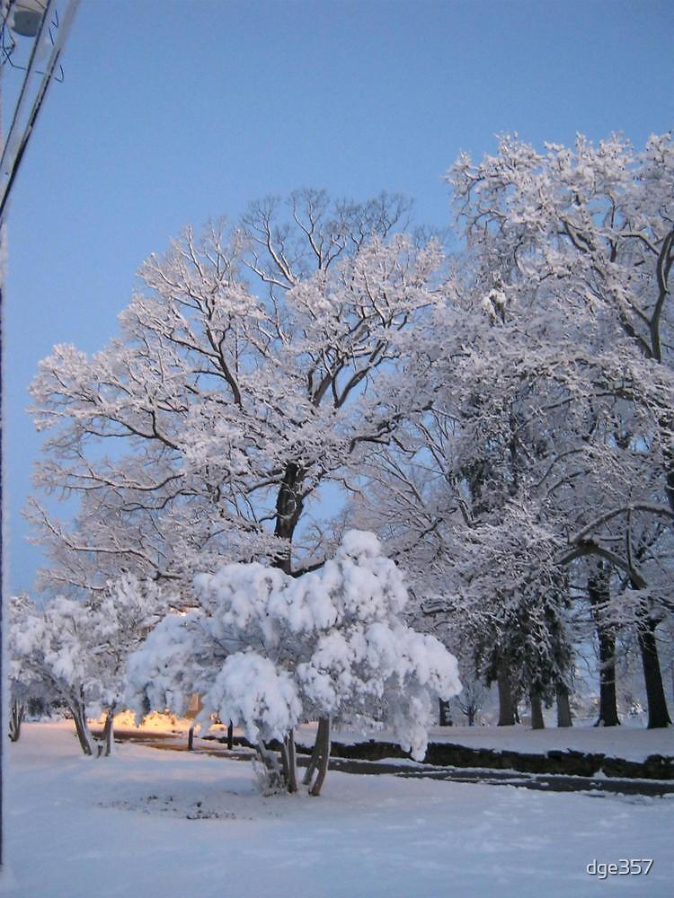 Feb. 19 2012 Snowstorm 75 by dge357