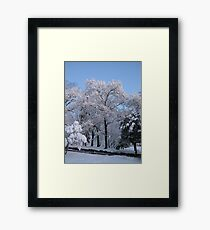 Feb. 19 2012 Snowstorm 77 Framed Print
