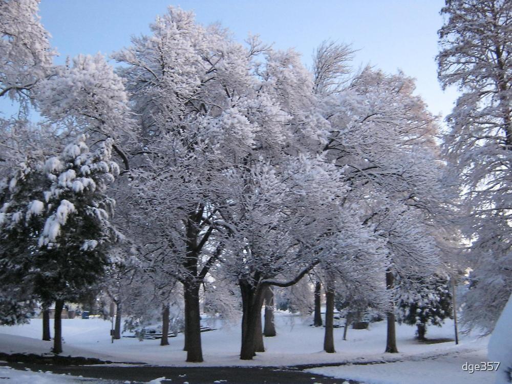 Feb. 19 2012 Snowstorm 78 by dge357