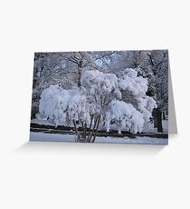 Feb. 19 2012 Snowstorm 79 Greeting Card