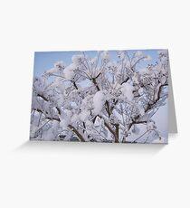 Feb. 19 2012 Snowstorm 93 Greeting Card