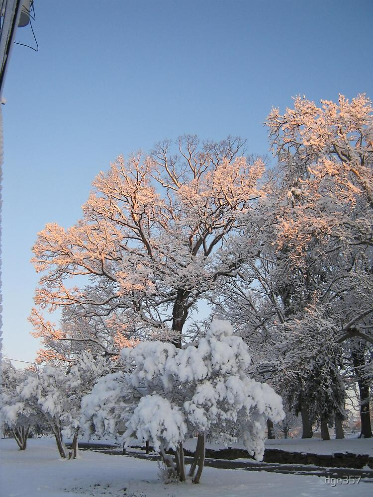 Feb. 19 2012 Snowstorm 99 by dge357