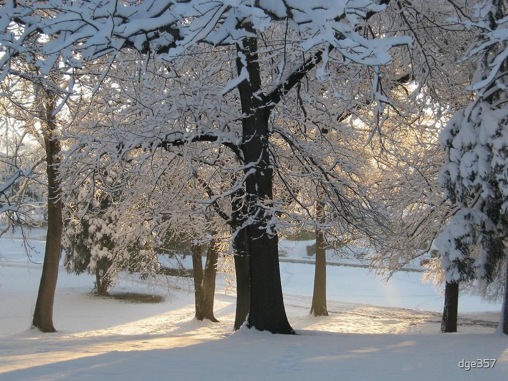 Feb. 19 2012 Snowstorm 117 by dge357