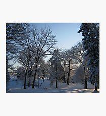Feb. 19 2012 Snowstorm 121 Photographic Print