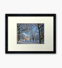 Feb. 19 2012 Snowstorm 126 Framed Print