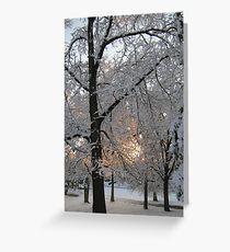 Feb. 19 2012 Snowstorm 132 Greeting Card