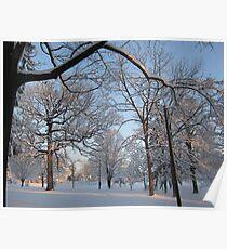 Feb. 19 2012 Snowstorm 133 Poster
