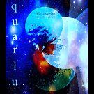 AQUARIUS ..JAN 20TH - FEB 18 by Sherri Palm Springs  Nicholas