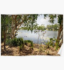 Ross River, Townsville, from Riverside Poster