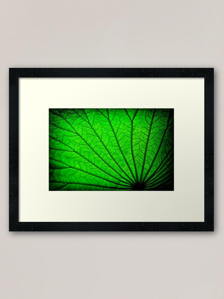 Alternate view of Lotus Leaf Framed Art Print