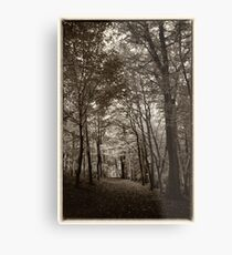 Rolduc Abbey Park, Kerkrade, Netherlands Metal Print