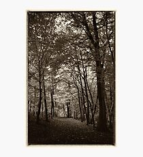 Rolduc Abbey Park, Kerkrade, Netherlands Photographic Print