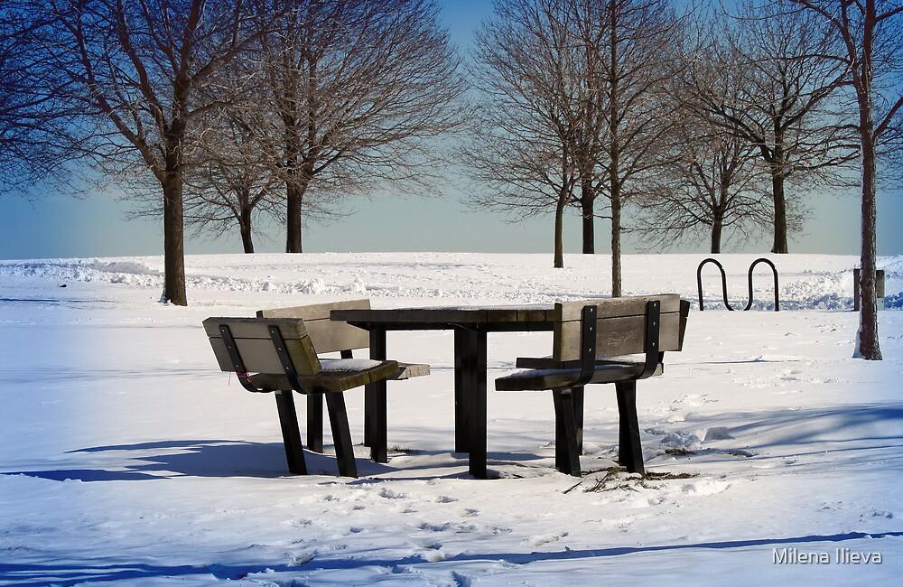 White Winter by Milena Ilieva